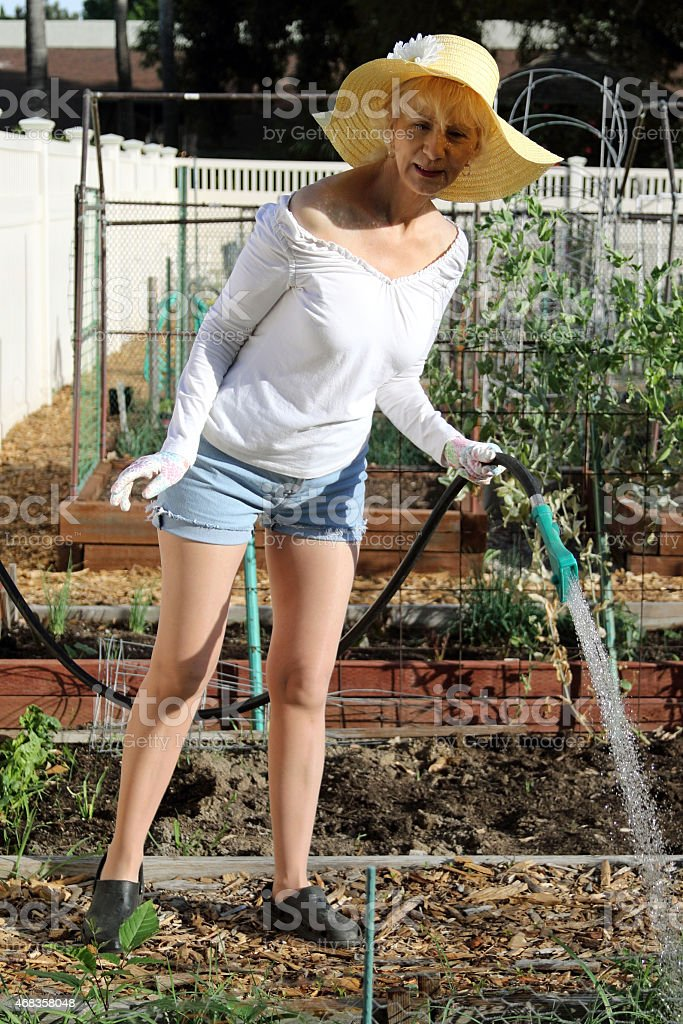 Senior Adult Female Watering royalty-free stock photo
