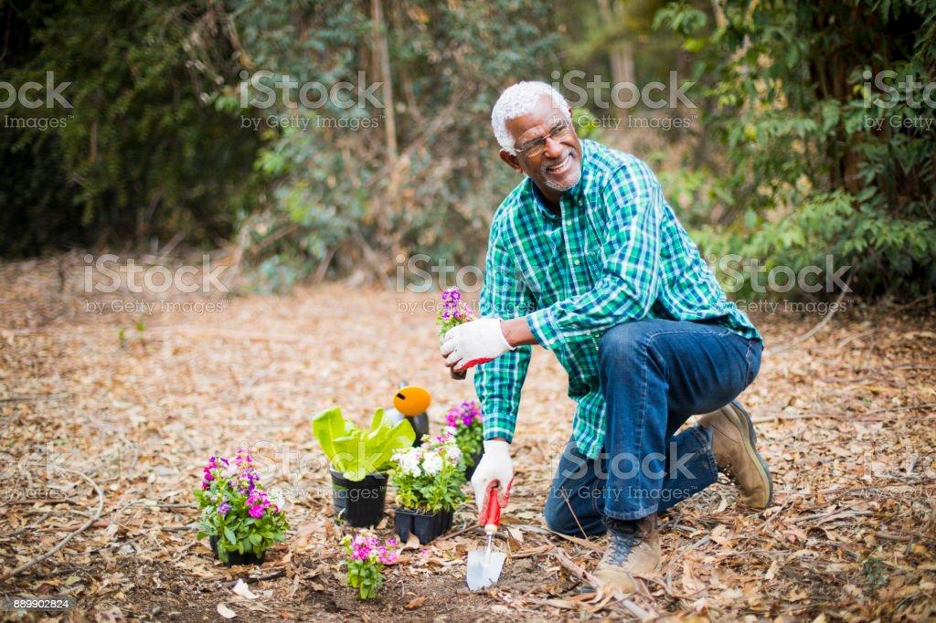 Senior afro-américain de plantation dans le jardin - Photo