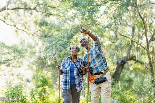 A senior African-American couple in their 70s enjoying the outdoors, hiking in a park. They are standing together with trees and lush foliage in the background.