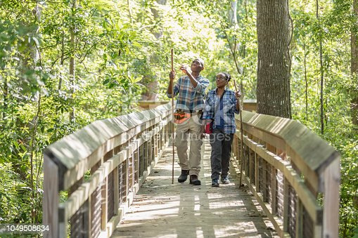 A senior African-American couple in their 70s enjoying the outdoors, hiking in a park. They are walking together over a footbridge surrounded by trees and lush foliage.