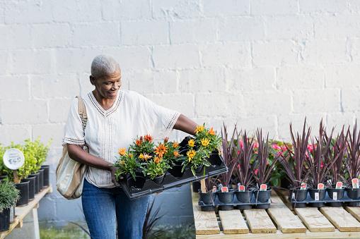 Senior African-American woman shopping in garden center