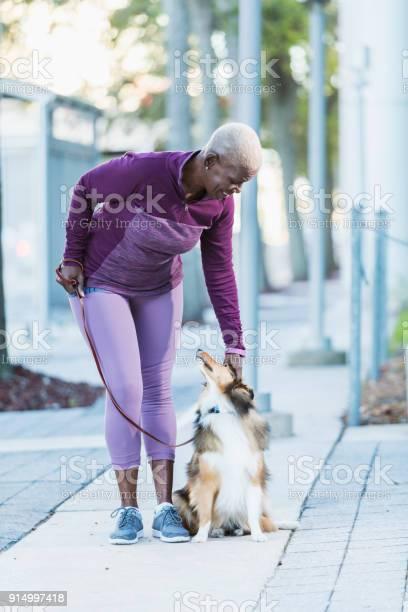 Senior africanamerican woman walking dog picture id914997418?b=1&k=6&m=914997418&s=612x612&h=fmrcjfc4ox wox2 ucmi1liyrdshj0cthvrg1sm  n0=