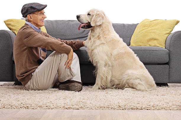 Senior and his dog looking at each other stock photo