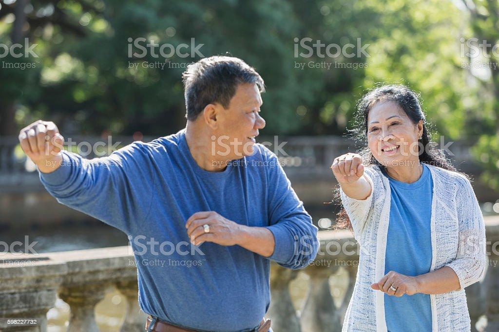 Senior asiática Casal fazendo tai chi na park foto royalty-free