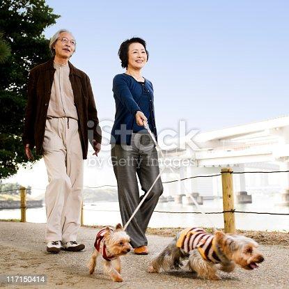 874818944 istock photo Senior Asian Couple Walking Their Dogs 117150414