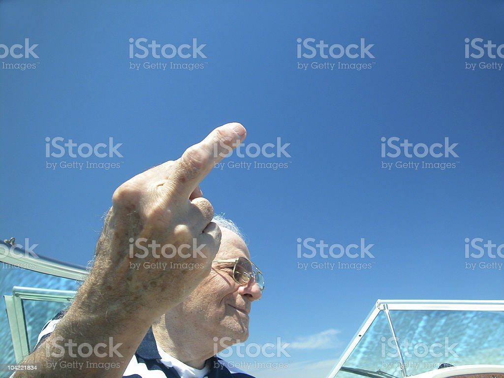 Senior Bird 1 royalty-free stock photo