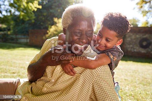 istock Senior black man sitting on grass, embraced by his grandson 1045343678