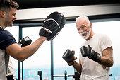 Senior Boxer giving his best
