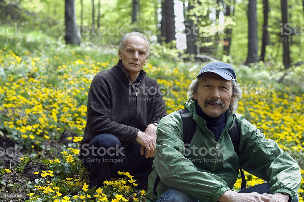 Senior Brothers in nature stock photo