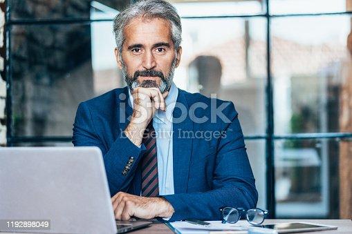 891418990 istock photo Senior businessman 1192898049