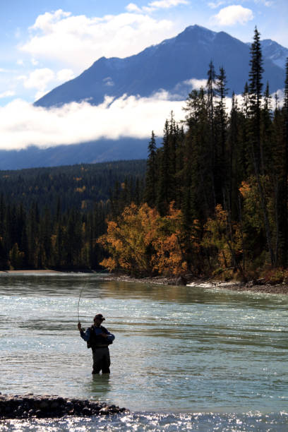 Senior Caucasian Male Fly-Fishing in Montana United States