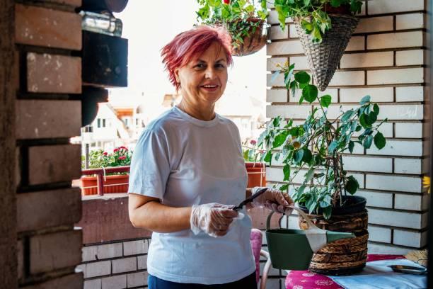 Senior caucasian woman working in home garden stock photo