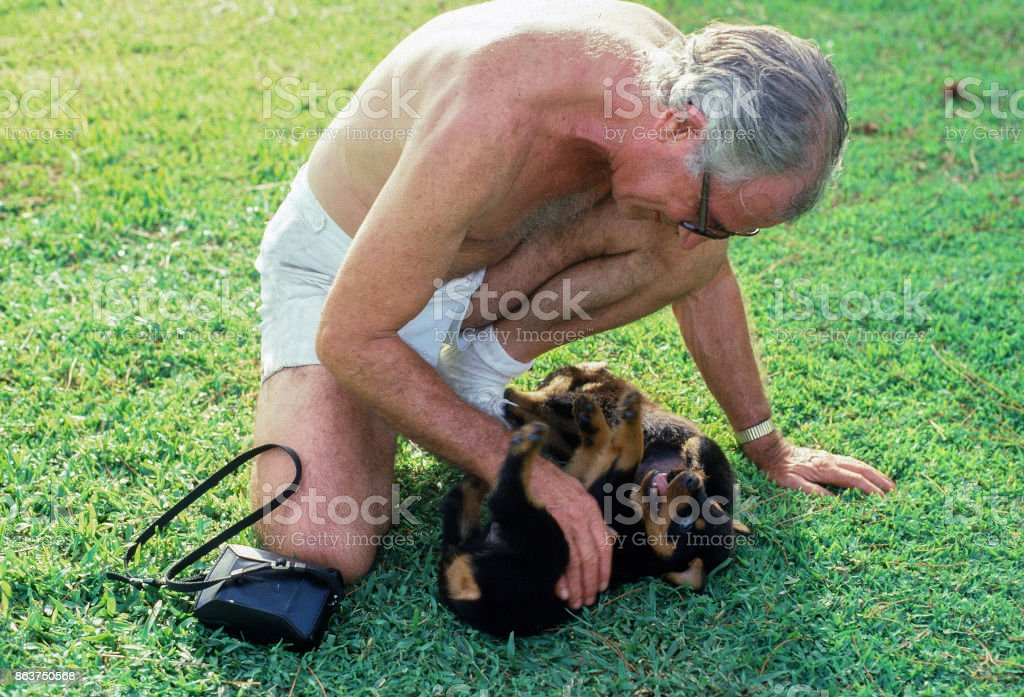 Senior citizen playing with puppies stock photo