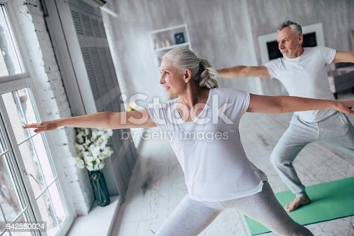 942580016istockphoto Senior couple at home 942580024
