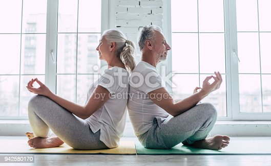 942580016istockphoto Senior couple at home 942580170