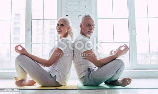 942580016istockphoto Senior couple at home 942580184