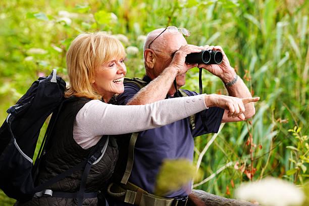 coppia senior bird watching - osservare gli uccelli foto e immagini stock