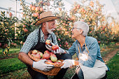 Senior couple with a basket of apples outdoors