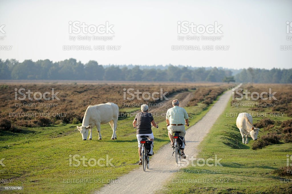 Senior couple cycling in nature stock photo
