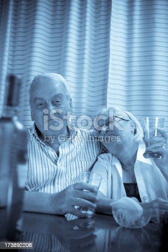 Senior couple enjoying drinks.Retirement concept.Monochrome blue