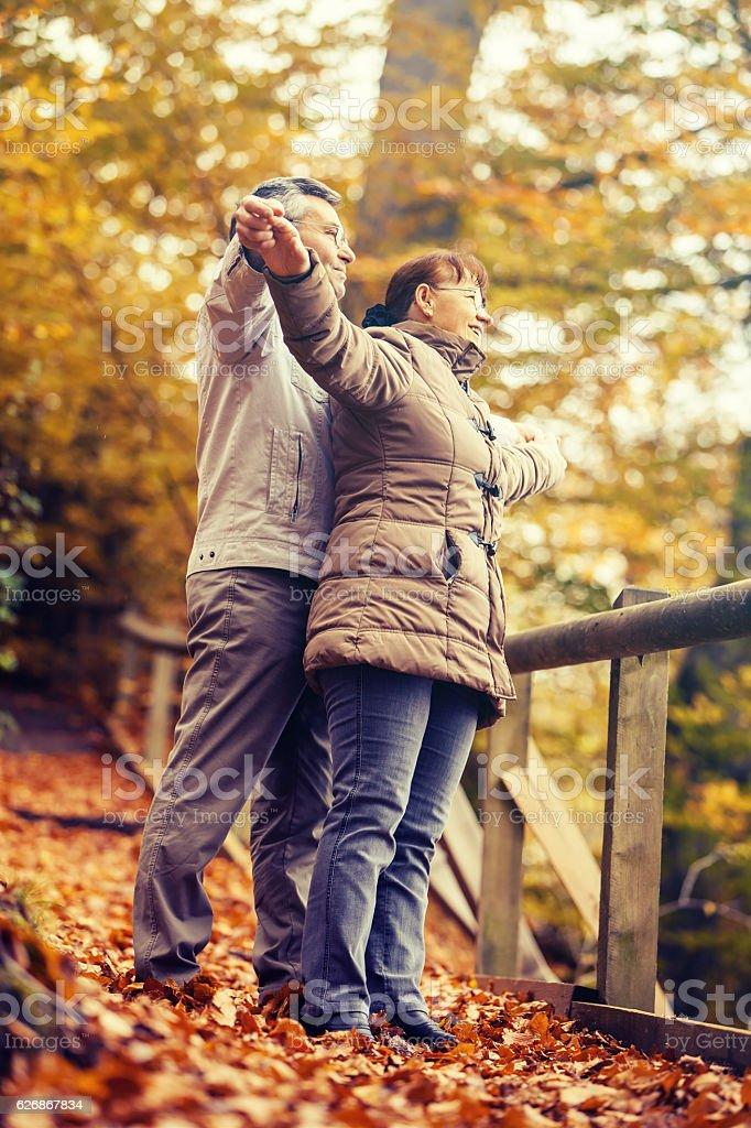 Senior couple enjoying stock photo