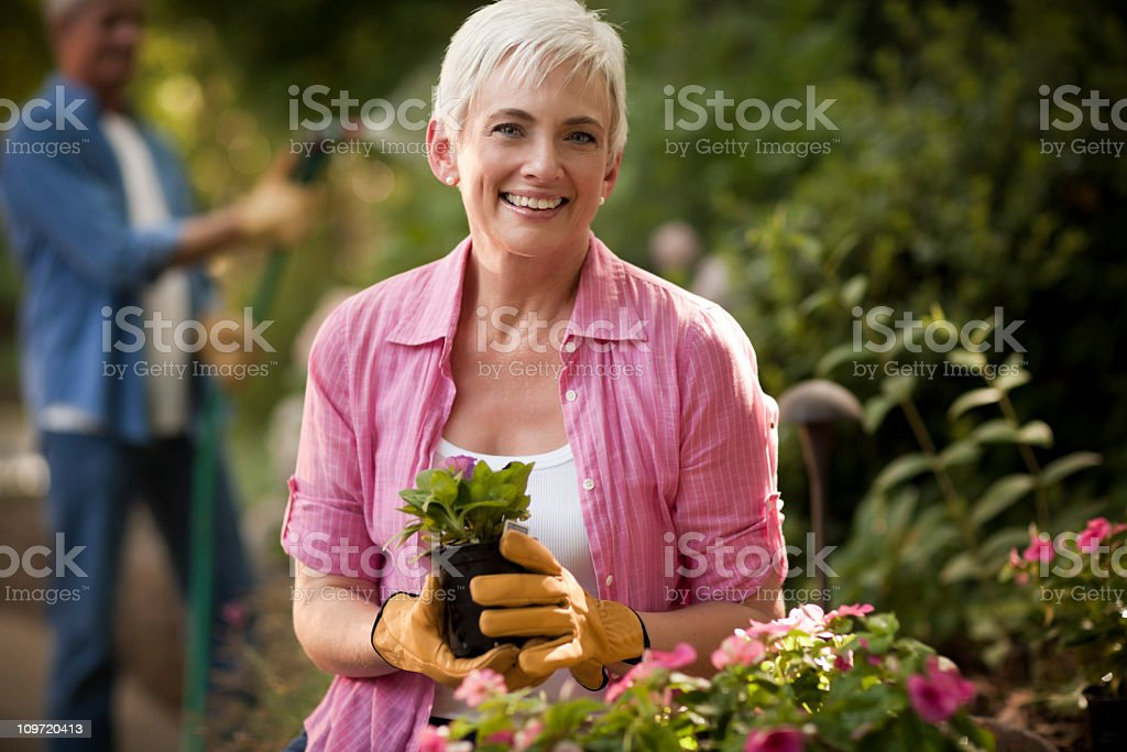 Senior Couple Gardening royalty-free stock photo