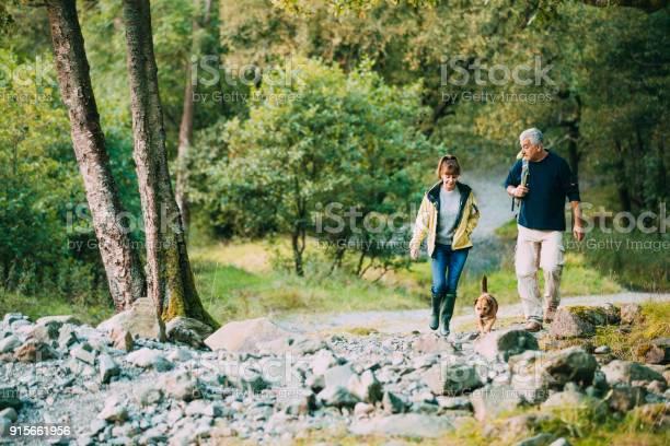 Senior couple hiking with dog picture id915661956?b=1&k=6&m=915661956&s=612x612&h=mh8y4735oey76xoqz 0q3ogrhbvouokjqdzbep4u9ka=