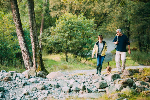 senior couple hiking with dog - uk travel stock photos and pictures