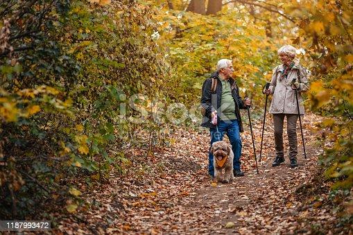 874818944 istock photo Senior Couple Hiking With Their Dog 1187993472