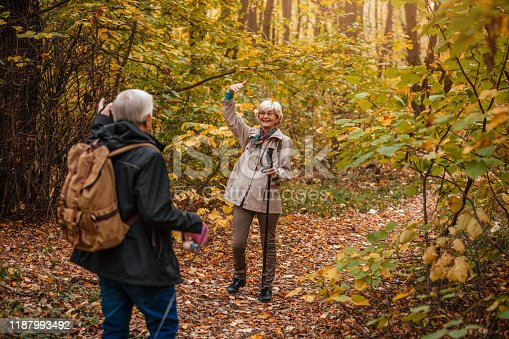 874818944 istock photo Senior Couple Hiking With Their Dog 1187993492