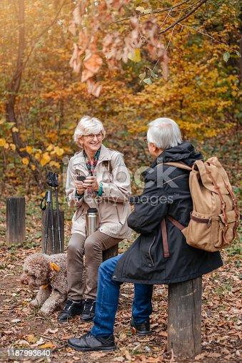 874818944 istock photo Senior Couple Hiking With Their Dog 1187993640
