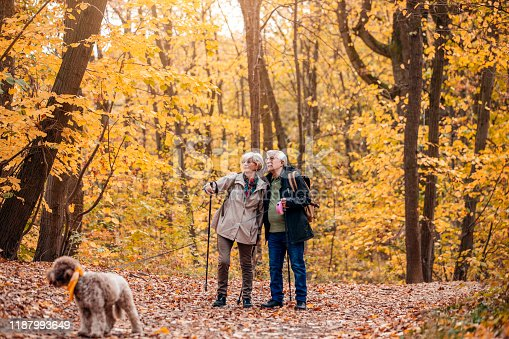 874818944 istock photo Senior Couple Hiking With Their Dog 1187993649