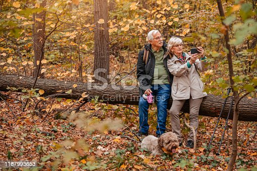 874818944 istock photo Senior Couple Hiking With Their Dog 1187993653