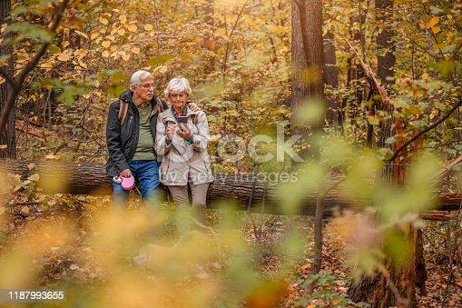874818944 istock photo Senior Couple Hiking With Their Dog 1187993655
