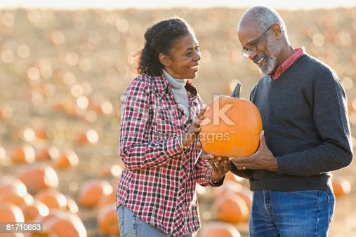 81711567 istock photo A senior couple holding a pumpkin 81710653