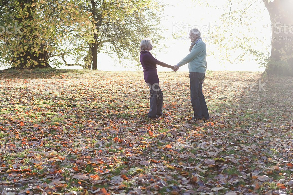 Senior couple holding hands outdoors in autumn royalty free stockfoto