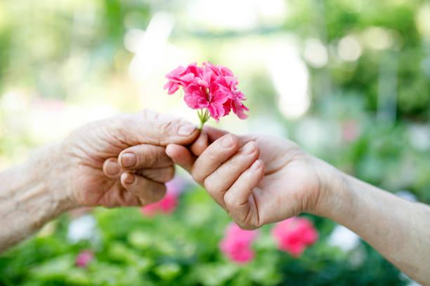 Senior couple in love picture id1015475948?b=1&k=6&m=1015475948&s=612x612&w=0&h=7asgs vgkqhj7xawebes9xnlbrpywz3csl4dkx2xcxk=