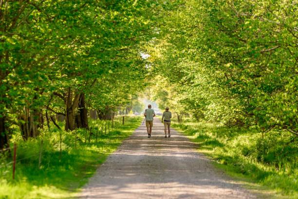 couple Senior dans la nature - Photo