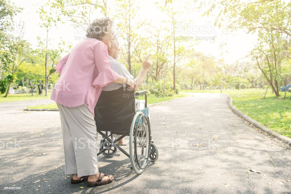 Senior couple in park and in wheelchair. Chinese old couple in park, relaxing, smiling. Man on wheelchair with his wife. Copy space. - Royalty-free Active Seniors Stock Photo