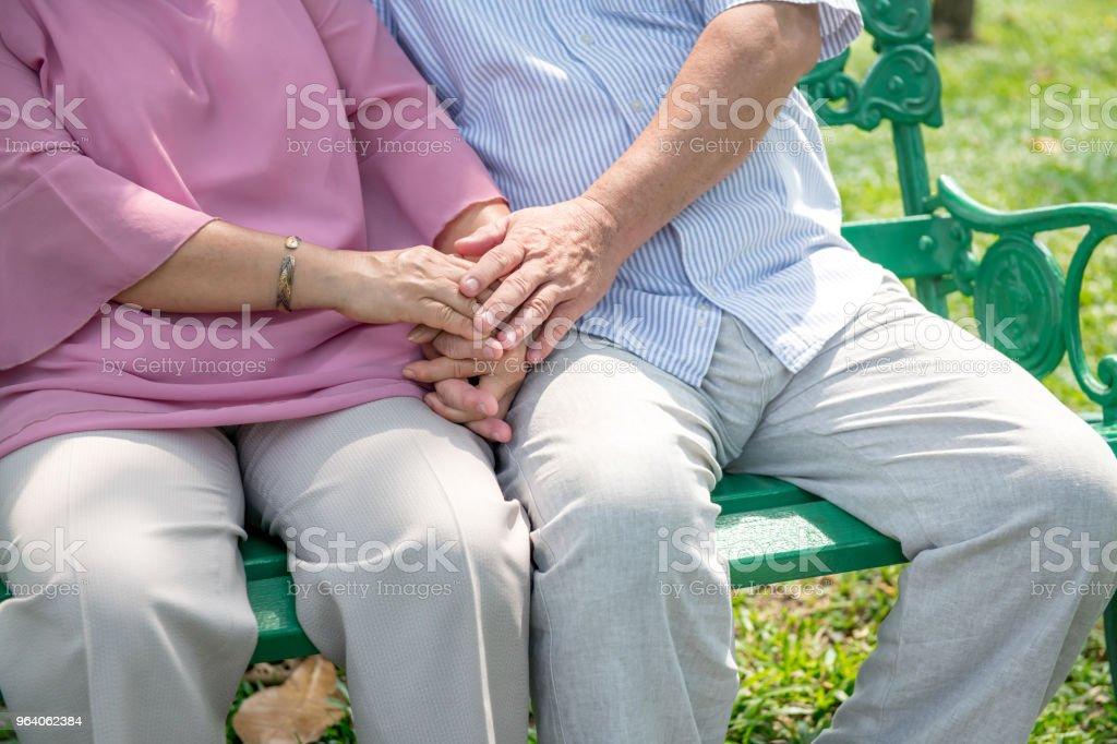 公園のベンチで老夫婦。リラックスして手を繋いでいます。中国の男性と女性。 - アクティブシニアのロイヤリティフリーストックフォト