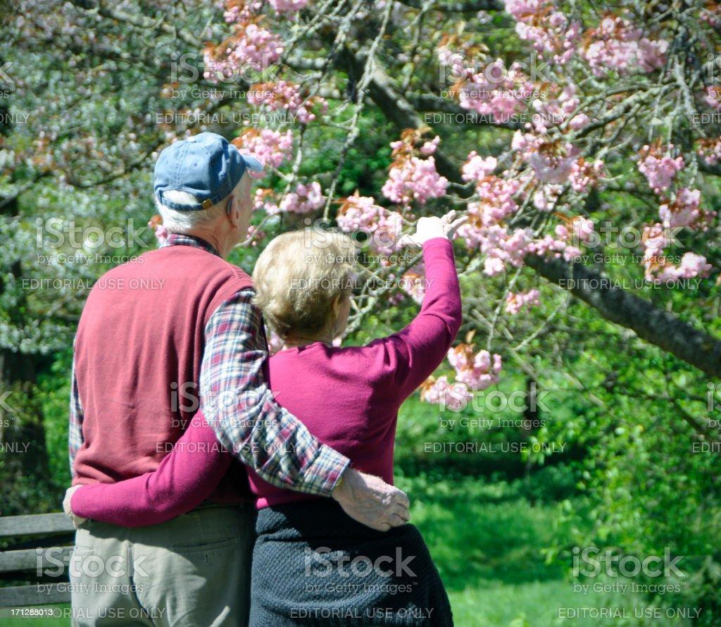 Senior couple in Seattle Park stock photo