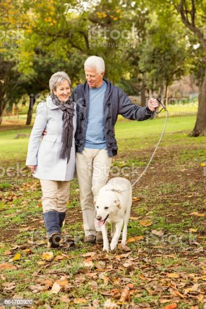 Senior couple in the park picture id664703920?b=1&k=6&m=664703920&s=612x612&h=lxowhqhlonork nuoal2pmgi6pls ebeamzdvzvi3hc=