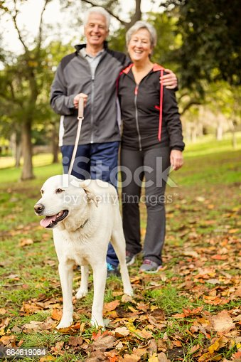 874818944 istock photo Senior couple in the park with dog 664619084