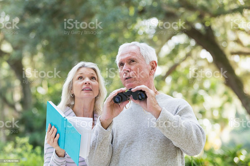 Senior couple in the woods birdwatching stock photo