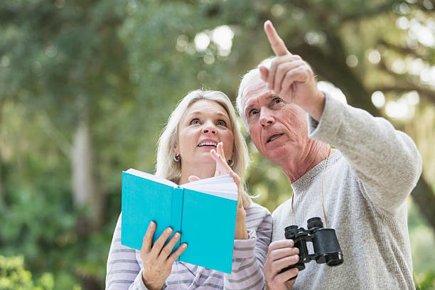 Senior couple in the woods birdwatching stock photo