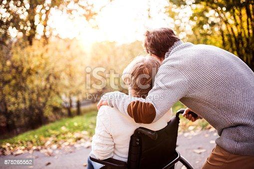 istock Senior couple in wheelchair in autumn nature. 875265552