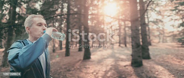905501696 istock photo Senior couple jogging in a forest 1097398624