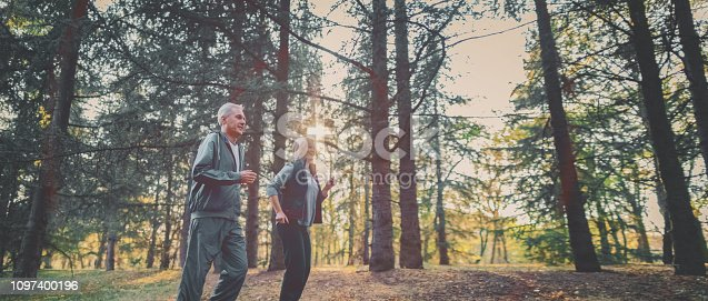 istock Senior couple jogging in a forest 1097400196