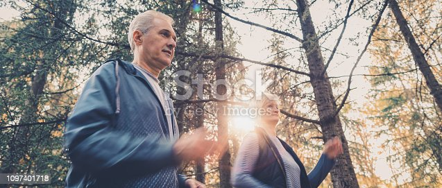 istock Senior couple jogging in a forest 1097401718