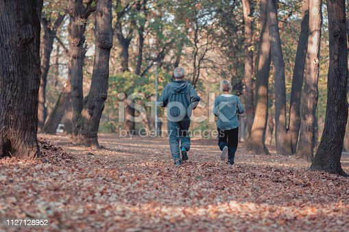 istock Senior couple jogging in a forest 1127128952